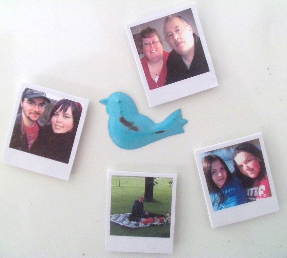 Mini-Polaroid magnets