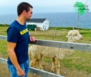 Aaron wasn't quite as enthused, nor was Mr. Alpaca lol