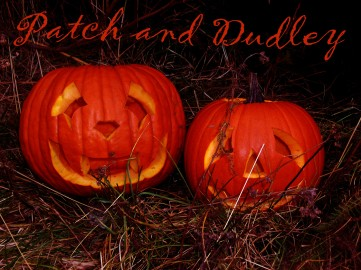 2005 Pumpkins