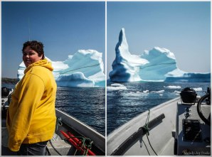 The best viewing spot for Icebergs on the famed Iceberg Alley.