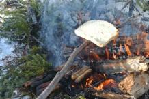 My toaster haha