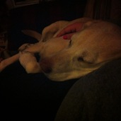 Honey-girl and me watching Duck Dynasty