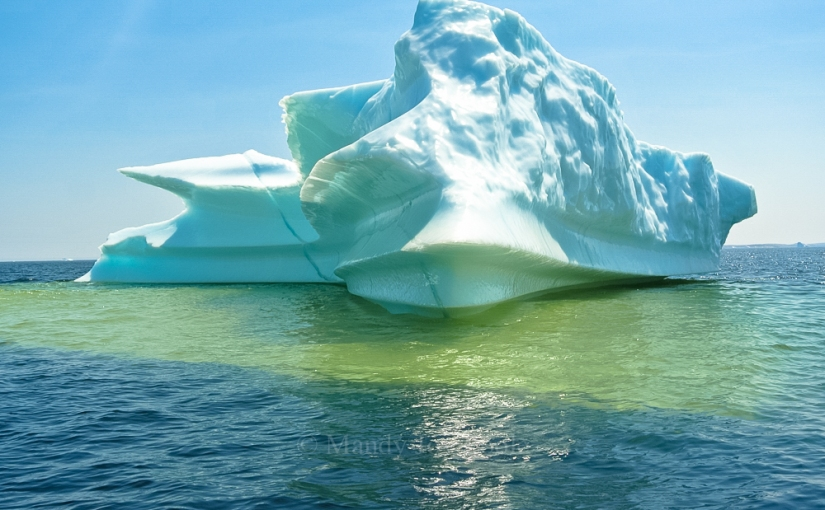 Labrador Icebergs – Canada Day Long Weekend 2014
