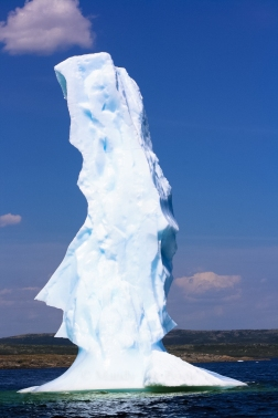Easter Island Ice Head? I think so!