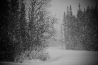 It keeps snowing.. over a foot so far