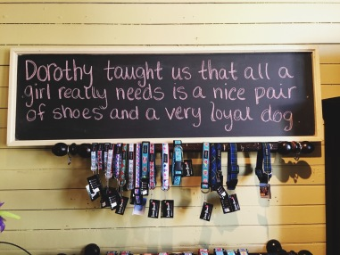 Got a toy for G here at The Dog Shop in Mahone Bay