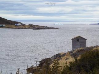 St. Lewis Icebergs