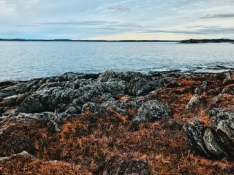 Fisherman's Point